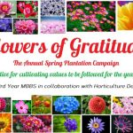 """THE FLOWERS OF GRATITUDE""- Bolan Medical College's first annual spring plantation campaign"