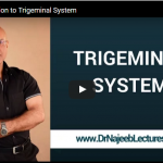 An Introduction to Trigeminal System by Dr Najeeb