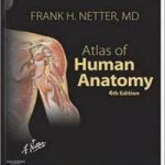 Atlas of Human Anatomy F. Netter PDF Download