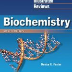 Lippincott's Illustrated Reviews: Biochemistry 6th edition Download