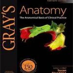 GRAY'S ANATOMY 40TH EDITION Download