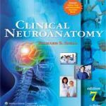 Download Snell's Clinical Neuroanatomy 7th edition CHM ,PDF