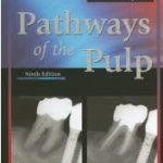 Pathways of the Pulp PDF Download