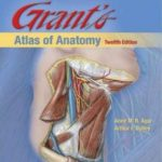Download Grant's atlas of Anatomy pdf