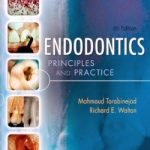 Endodontics: Principles and Practice, 4th Edition Download
