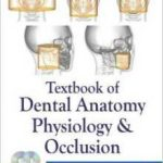 Textbook of Dental Anatomy, Physiology and Occlusion – Rashmi G. S. Phulari Download