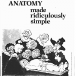 Clinical anatomy made ridiculously simple pdf Download