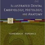 Illustrated Dental Embryology Histology and Anatomy, 4th edition